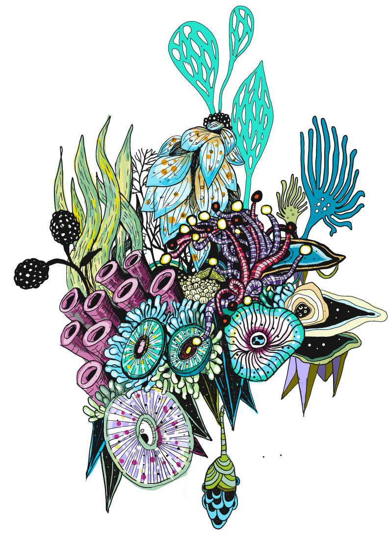 zentangle-gross-colored-LATEST-edited-min